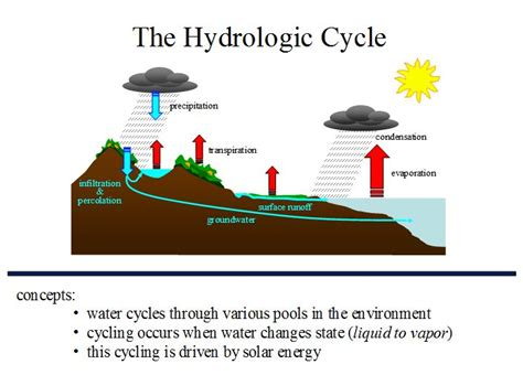 a diagram of the water cycle water cycle diagrams for water resources elsavadorla