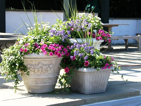 Garden Pots Design Ideas Planting Trees In Large Flower Pots Front Yard Plant Pot Design Ideas Vava