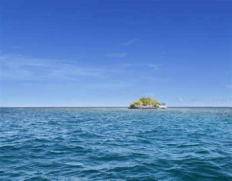 Bird Island Placencia | bird island placencia belize top private islands you can buy pictures pics express co uk