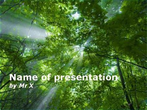 forest template light in the forest powerpoint template
