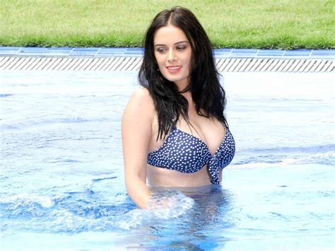 evelyn sharma film evelyn sharma hot bikini images and wallpapers