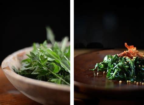 tarassaco in cucina tarassaco in cucina come si mangia e come si usa