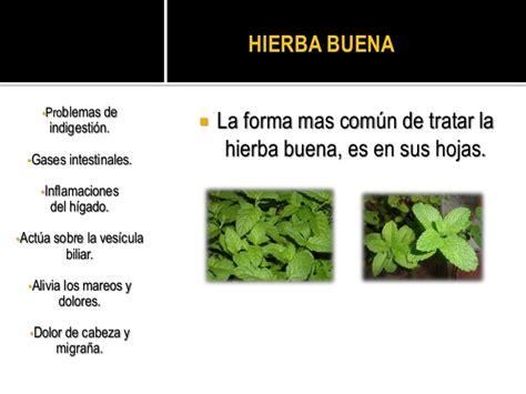 imagenes satelitales y su uso plantas medicinales mas comunes