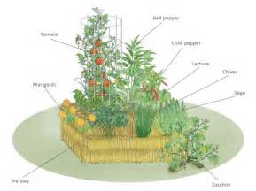 Vegetable Planter Boxes by One Straw Bale At A Time Quarto Homes