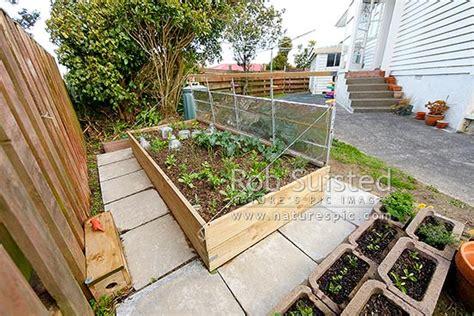 self sufficient backyard triyae com self sufficient backyard gardening various