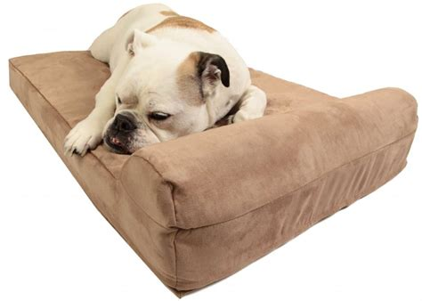medium sized dog beds best orthopedic dog beds 2016 dogs recommend