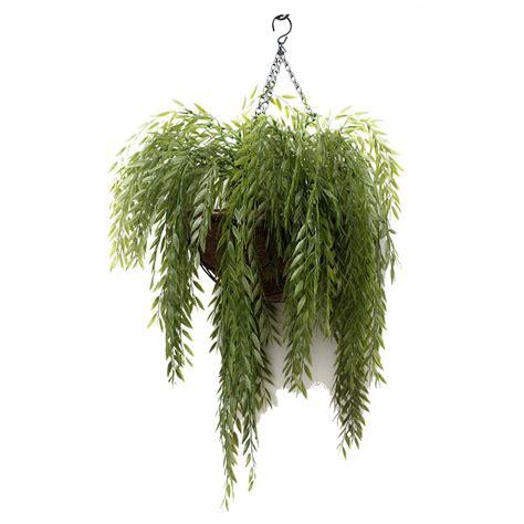 hanging plants jm034 ruccus vine basket wyer haus bar pinterest