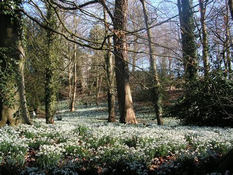 Landscape Arboretum Careers 31 Original Landscape Gardening Cheltenham Izvipi