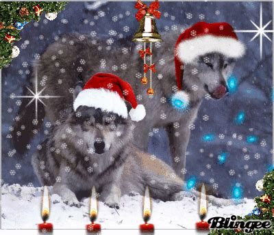 merry christmas wolves christmas wolves picture  blingeecom christmas wolf