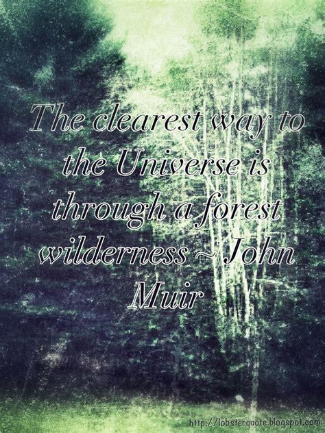 muir quotes forest muir quotes quotesgram