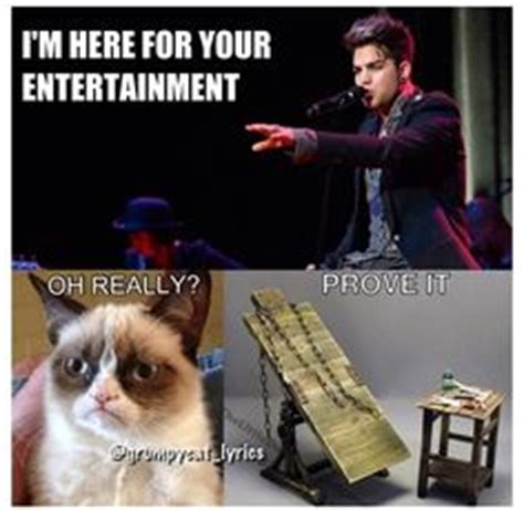 Adam Lambert Memes - 1000 images about tard the grumpy cat on pinterest