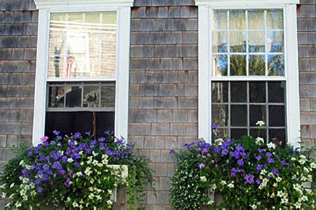 houses with window boxes window box basics this old house