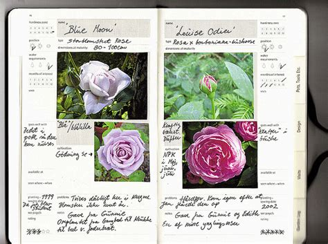 Gardening Journal by Gardening Journal Record Of Garden And Memories