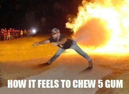 5 Gum Meme - how it feels to chew 5 gum pure awesomeness pinterest