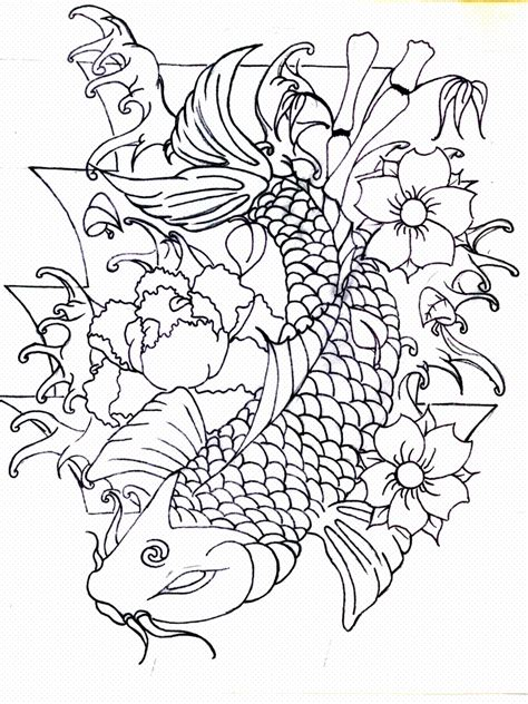 koi fish tattoo outline designs 2 koi fish outline designs www imgkid the