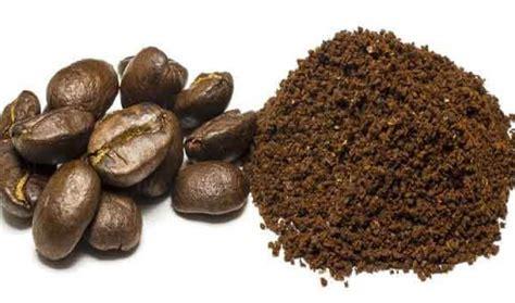 cara membuat masker yogurt dan minyak zaitun 4 manfaat masker kopi dan minyak zaitun serta cara