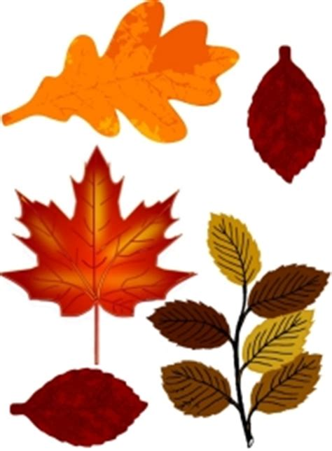 printable fall leaf decorations printable autumn leaves cut outs