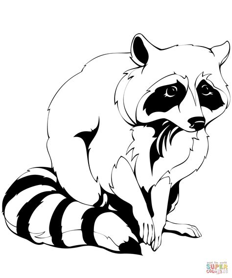 coloring book pages raccoon common raccoon clipart clipground