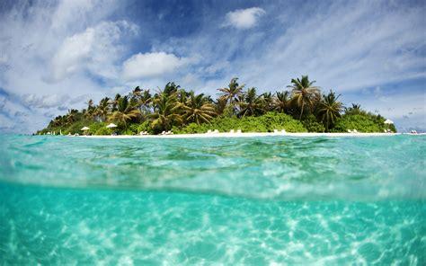 island paradise this kickstarter caign wants to build a cannabis island