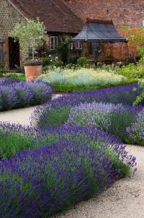 lavender lifts a garden garden lavendel