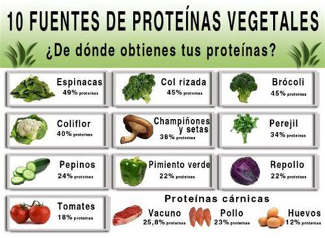 q proteina tiene la carne nth alimentos vegetarianos que tienen mucha prote 237 na