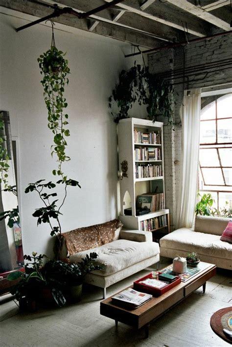 plante verte pour chambre la plante verte d int 233 rieur archzine fr