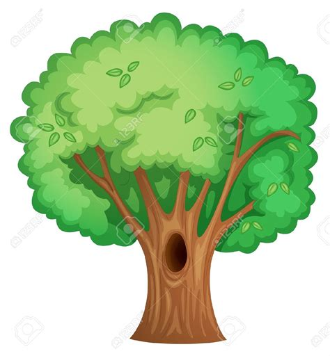 tree clipart tree isolated clipart clipground
