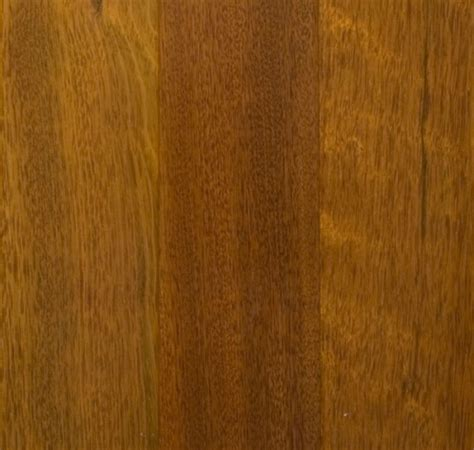 Hardwood Flooring In Mississauga by Hardwood Floors Showroom Mississauga Brabus Hardwood Floors