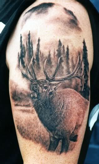 elk tattoos designs 20 great tattoos me now