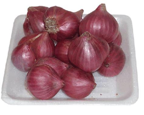 Bawang Hitam Herbal B Aswad khasiat bawang merah untuk kesehatan blogdokter