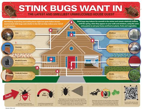 Bed Bugs In Ohio Orkin Science Education Insect Facts Crafts Amp Lesson Plans