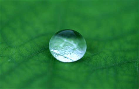 Atomic World Lotus Effect Introduction Atomic Lotus