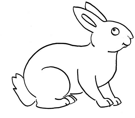 sketsa gambar kelinci hitam putih  anak tk