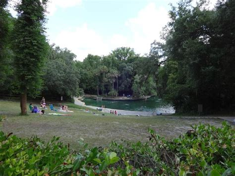 Wekiwa Springs Cabin Rentals by Our Csite Picture Of Wekiwa Springs State Park