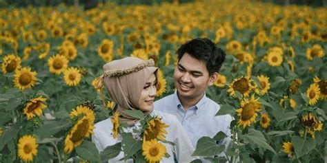 kebun bunga matahari  instagram   indonesia