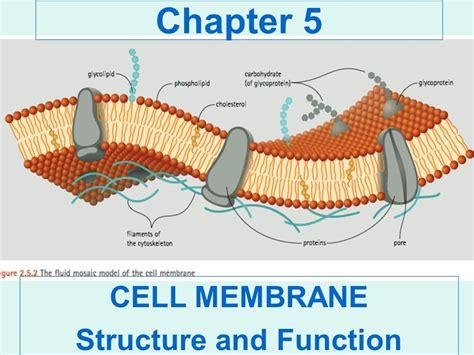 membrane layout design number download prehospital emergency care