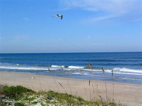 canaveral beaches best beaches of the florida east coast travel