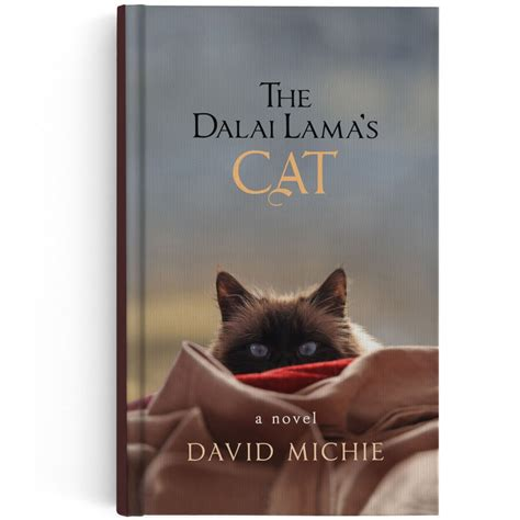 cat picture book top 10 cat books for fall reading iheartcats