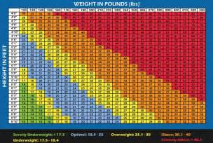 Download image men bmi scale chart pc android iphone and ipad