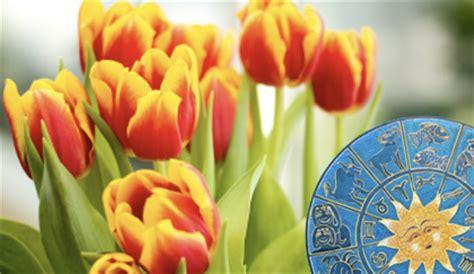 oroscopo dei fiori l oroscopo dei fiori tutti i segni zodiacali hanno un