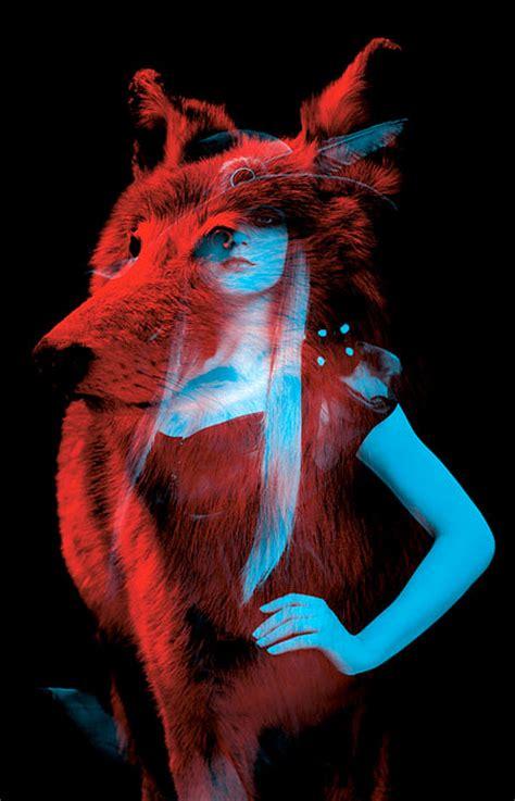 inner spirit animal image gallery inner animal