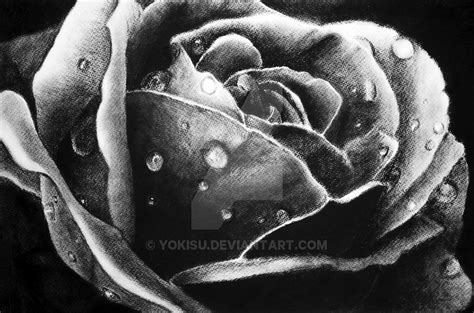 pencil drawings charcoal drawings and art galleries rose charcoal rose by yokisu on deviantart