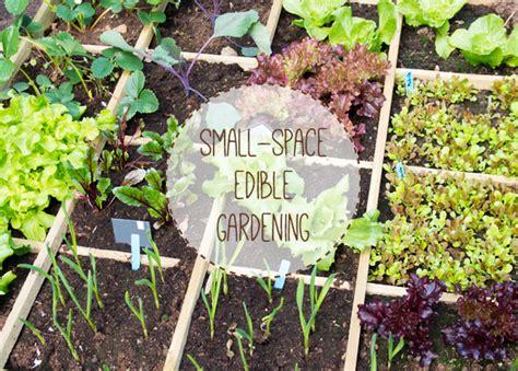 Growing Fruit & Vegetables in Small Spaces   Urban Turnip