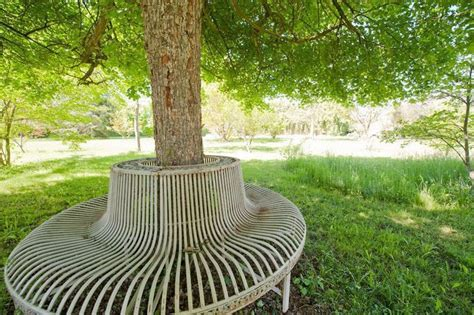 bench around tree trunk pin by guido frilli on garden benches pinterest