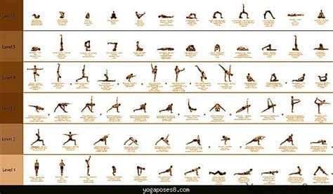 Pdf What Are Some Position by Basic Archives Poses Yogaposes