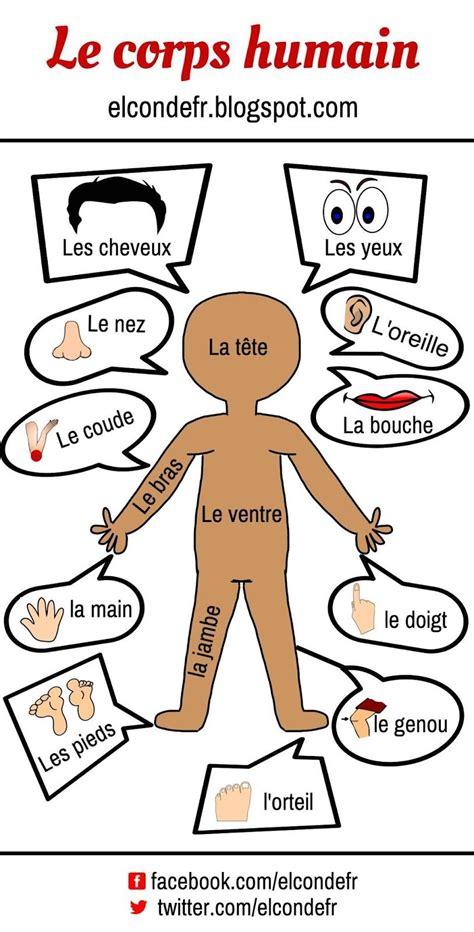 le corps voici une illustration pour r 233 viser le vocabulaire du corps humain je vous propose encore