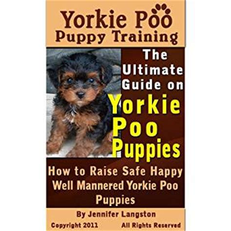 puppyhood a trained puppy a happy owner the yorkie poo puppy the ultimate guide on yorkie