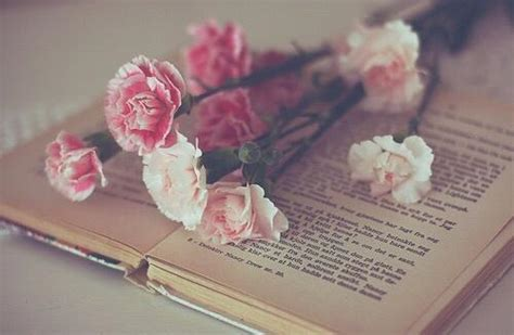 roses books aesthetic book flowers photography image