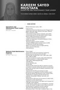 customer service team leader resume