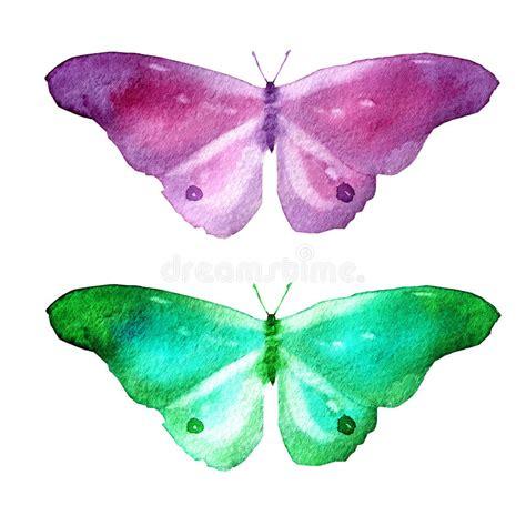 clipart farfalle illustrazione dell acquerello insieme immagine delle